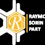RaymonSorin part